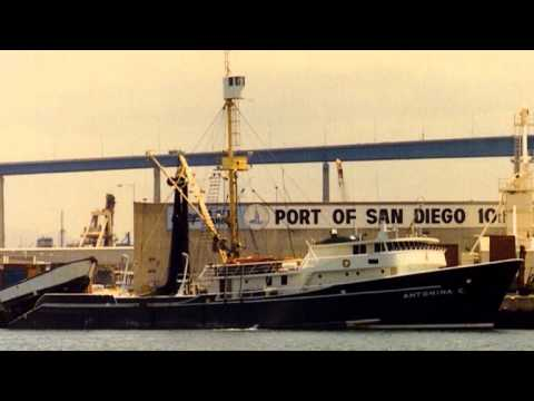 SAN DIEGO BAY ECO ECONOMICS