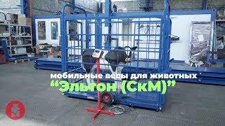 Мобильные весы для животных Эльтон (СкМ)