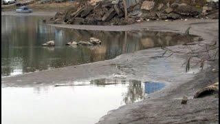 Тела двух связанных женщин обнаружили в Хабаровске.MestoproTV