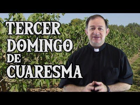 Tercer Domingo de Cuaresma - Ciclo C - Convertirse para dar fruto