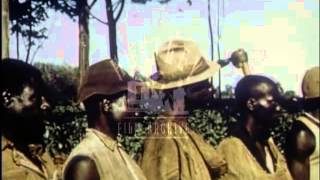 Kenya 1950's.  Village life.  Film 9027