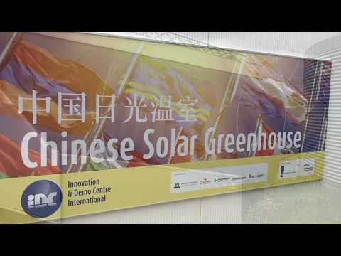 Grow: The Netherlands, Bleiswijk, Wageningen plant research, Chinese solar greenhouse