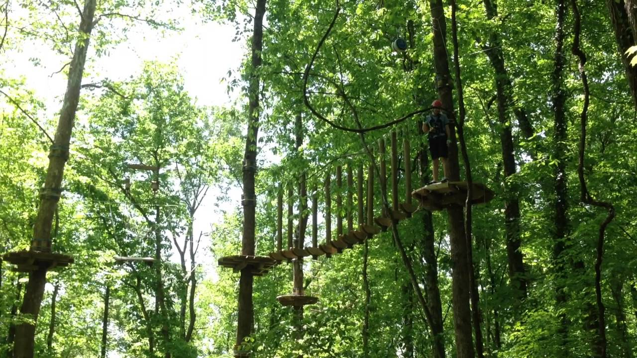 Navitat Canopy Adventures Knoxville TN