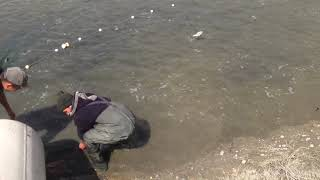 Халифа кишлок Рыбалка