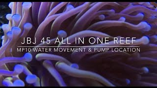 voretch mp10 reef tank water movement best placement and flow
