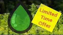 Buy The Best Hemp CBD Oil Tincture On Sale In Elgin, Chicago IL