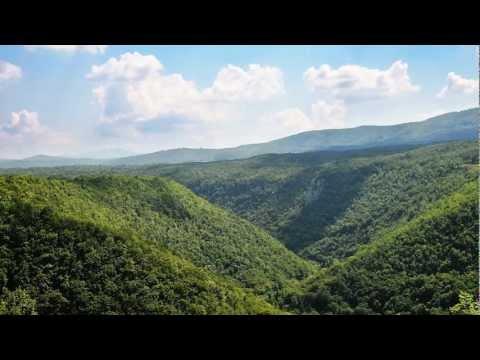 Welterbe - Alte Buchenwälder Deutschlands