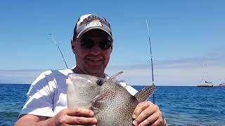 Риболовля на Тенеріфе год 2 і 3я