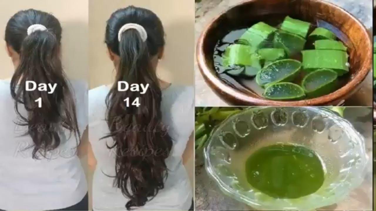 Đừng đi nối tóc, sau 14 ngày tóc bạn sẽ dài thêm 5 – 7 cm chỉ với 1 lá nha đam