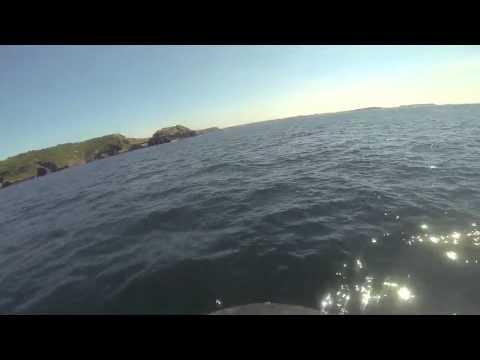 13 07 07 Jet Surf Brest Camaret Grand)