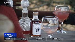 SOUTH AFRICA: Gin brewers raise funds for Rhino protection