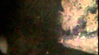 видео Срок службы чугунных канализационных труб