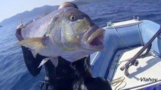 Spearfishing, Podvodni ribolov, Croatia, Dentex Dentex VII, 2015