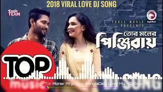 Tor Moner Pinjiray Tui Kare Dili Thai | Bangla New Dj Song | 2018