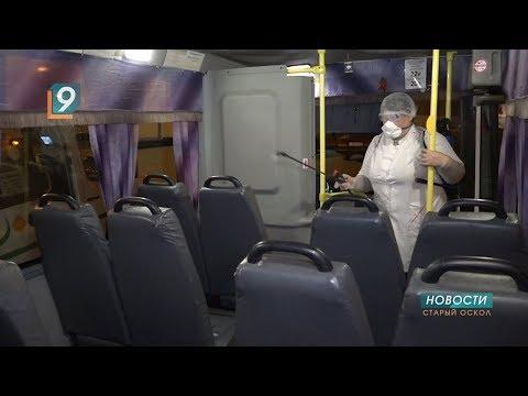 В Старом Осколе провели дезинфекцию городских автобусов