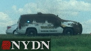 Swarm of bees attack Oklahoma police car