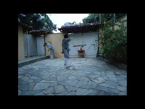 lateral kick shaolin