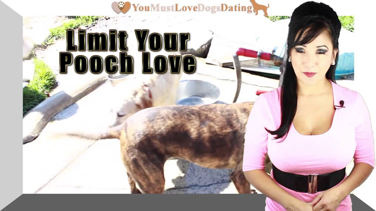You must love dogs dating reviews
