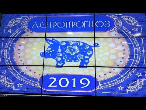 Астрологический прогноз и прогноз по фен шуй на 2019 год от Натальи Гайдаревой.