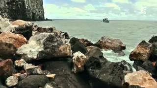 Repeat youtube video Les requins inconnus documentaire animaux sauvages complet en francais 2013