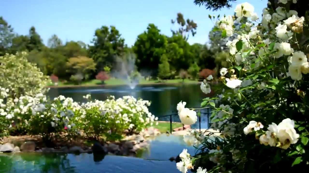 Grand Tradition Estate Gardens Youtube