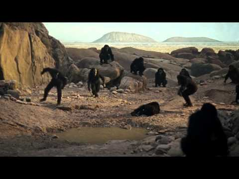 The Birth of Man - New Evidence of Homo Sapiens and Neanderthals coexisting like hippies