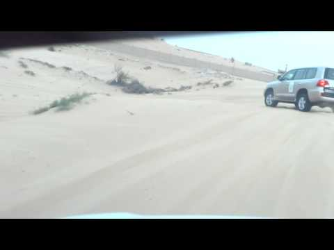 BEST OF DUBAI DESERT SAFARI, BEST EXPERIENCE OF THE WORLD