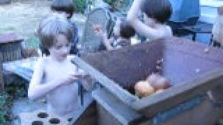 The Grandchildren Pressing Apples And Pears With Grandpa