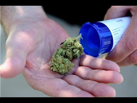 Is Cannabis the cure for Opioid addiction?