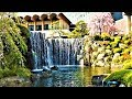 Luxury Hotel New Otani Tokyo the Main - beautiful 400 y.o. Japanese garden