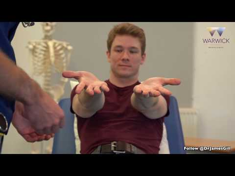 Respiratory Examination - Warwick Medical School