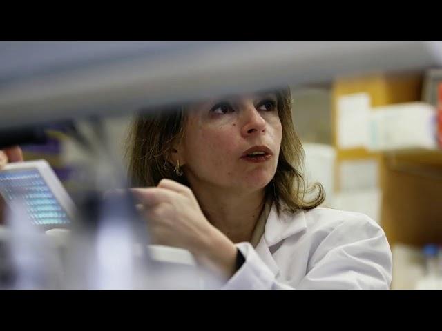 Faculty Spotlight: Inga Peter, PhD