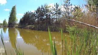 СЕКРЕТНАЯ РЫБОЛОВНАЯ НАСАДКА КОСИТ РЫБУ Насадка на Осетра Карпа Амура Карася Рыбалка 2020 весна