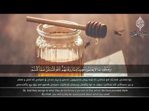 Сура 16 _ Ан - Нахл ( سورة النحل ) чтец : Раыд Мухаммад Курди