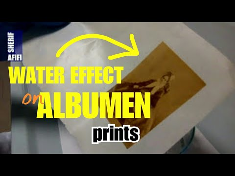 Removing albumen print from its secondary support