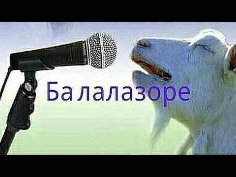 таджик прикол