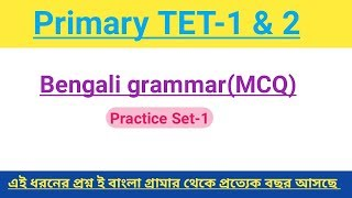 Bengali grammar Practice Set-1|| Primary TET-1 & 2 || Common question,