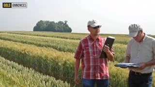 Annonce Ingenieur agronome au Maroc - GoldAnnonces #emploi