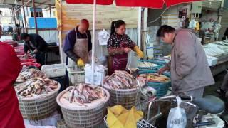 Shanghai Fish Market