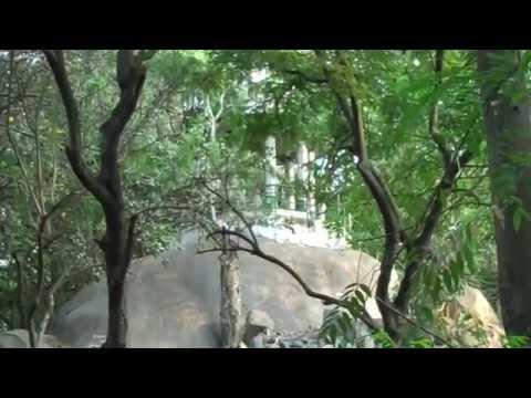 Bugle Rock Garden at Bangalore