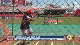 If the Cincinnati Bengals played baseball