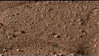 JPL Phoenix Lander shorts