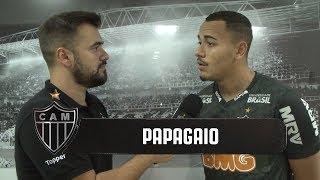 Bate-Papo: Papagaio (22/02/2019)