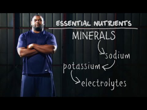 Nutrition, Hydration & Health – Science of NFL Football