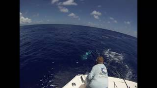 2017 Bermuda Big Game | Team Foreign Exchange | Blue Marlin