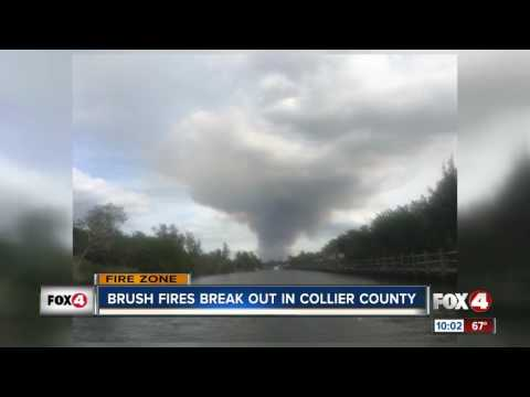 Brush fire in Collier County