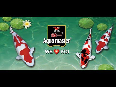 Aqua Master Koi Food And Ornamental Fish Food(English Version)