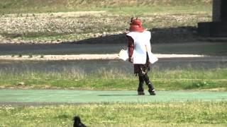 【岐阜城盛り上げ隊】 明智光秀インラインスケートin長良川公園 -------...