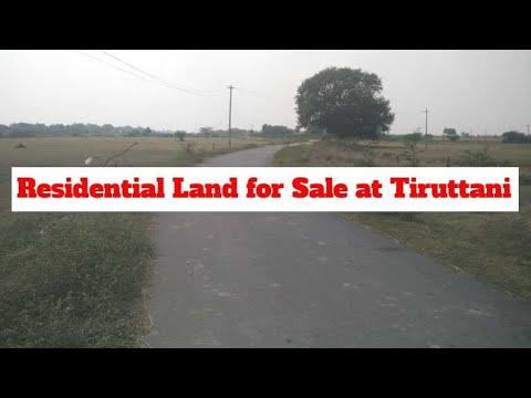 Residential Land For Sale At Tiruttani, Thiruvallur.