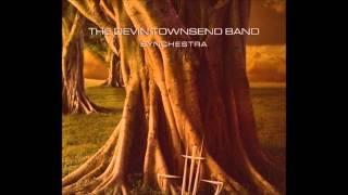 Devin Townsend - Babysong
